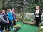 Cykl szkoleń z zakresu ziół, kwiatów jadalnych i roślin miododajnych.